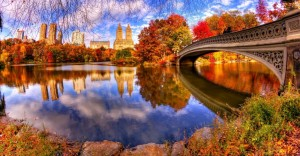 Central Park - New York - Park / Garden / Playground  | Croozi