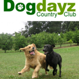 Dogdayz Country Clubs - Transportation / Movers  | Croozi