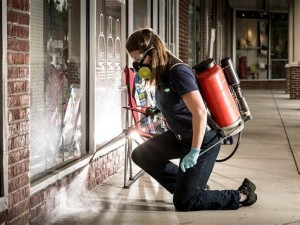 Pest Control Brisbane - Cleaning Services    Croozi