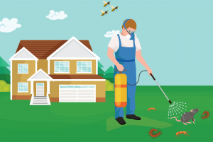 My Home Pest Control - Brisbane - Cleaning Services  | Croozi