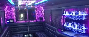Luxury Party Bus And Limo - Paterson