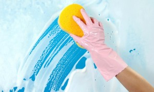 Busy Bee Cleaning Services