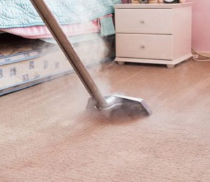 Professional Carpet Cleaning Ballarat