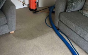 Carpet Stain Removal Geelong West