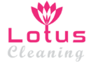 Lotus Upholstery Cleaning Black Rock