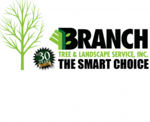 Branch Tree & Landscape Service - Warren