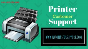 1-855-536-5666 Hp Printer toll free number - Washington