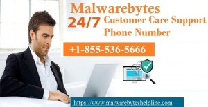 18555365666 Malwarebytes Antivirus Customer Service - New York