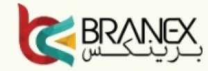 Branex Web Design Agency - Dubai