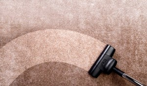 Squeaky Carpet Cleaning Melbourne