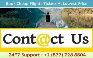 Cheap Flights From Los Angeles To New York - Upto 50% off