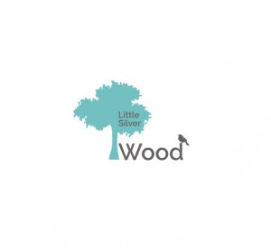 Little Silver Wood Muddiford