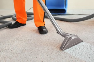 Gold Coast Carpet Cleaning Services