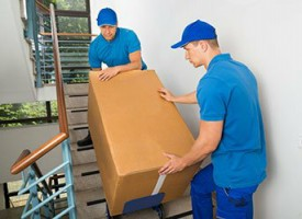Springall Movers - Packers and Movers Near Me